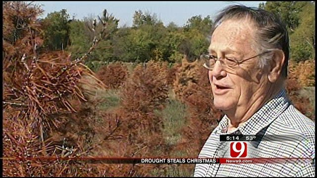 Drought Deals Death Blow To Purcell Christmas Tree Farm