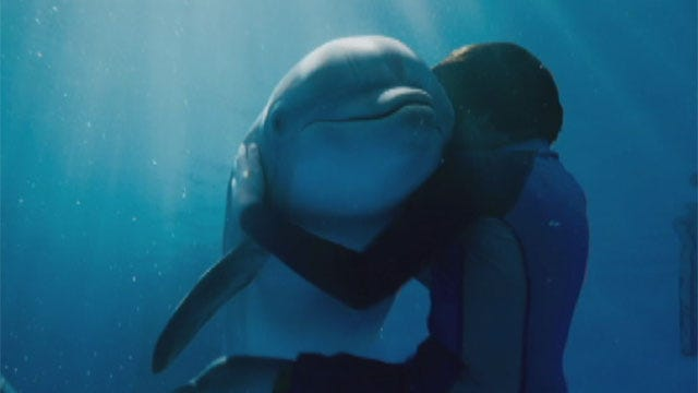 Oklahomans Help Dolphin Featured In 'Dolphin Tale'