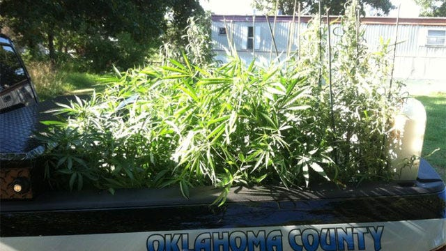 Oklahoma County Sheriff's Office Shuts Down Marijuana Operation In Choctaw