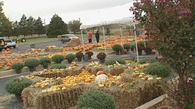 Annual Fall Festival In Edmond Helps Adults With Special Needs