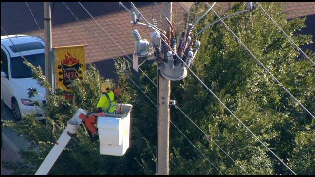 Birds To Blame For Power Outage In Downtown OKC