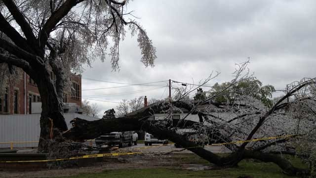 El Reno Offers Help In Ice Storm Damage Clean Up