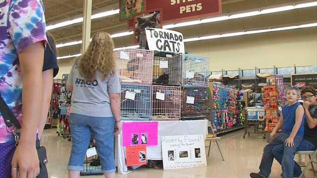 Norman Pet Store Hosts Adoption Event For Cats Displaced By Tornado