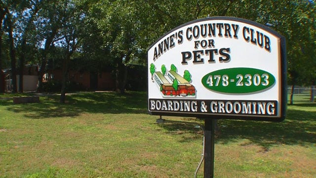 Most Tornado Pets At Closing OKC Kennel Adopted