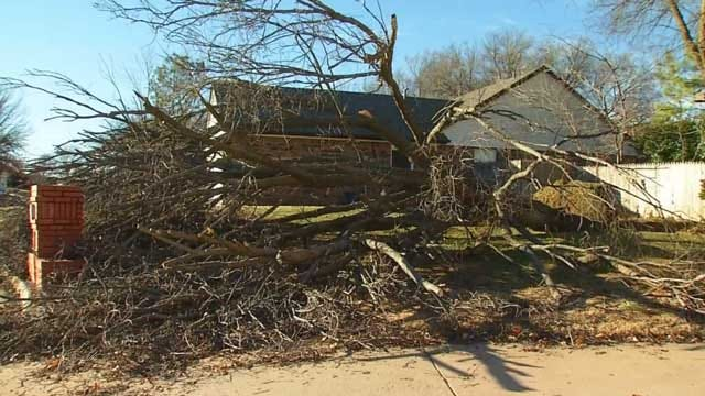 Metro Residents Dealing With Ice Storm Tree Debris