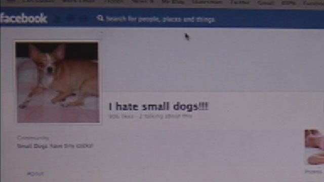 Facebook Firestorm Over 'I Hate Small Dogs' Fan Page