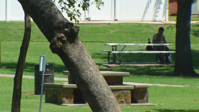 Partially Blind Guitarist Beaten, Robbed In Shawnee Park