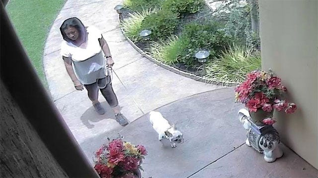 Home Security Camera Catches Possible Burglary Suspect In SW OKC