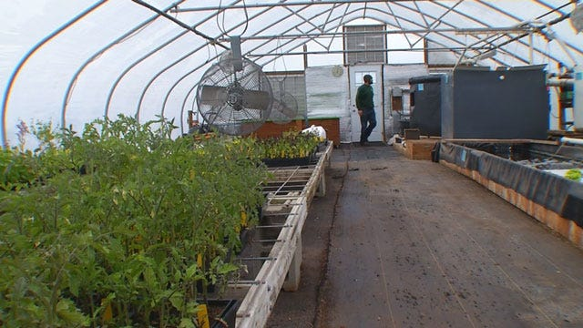 Late Freeze Adversely Impacting Oklahoma Vegetable Growers