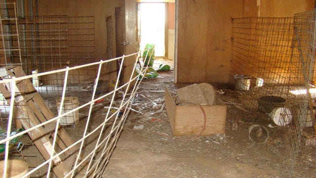 El Reno Woman Arrested After 32 Dogs Found Living In Filthy Conditions