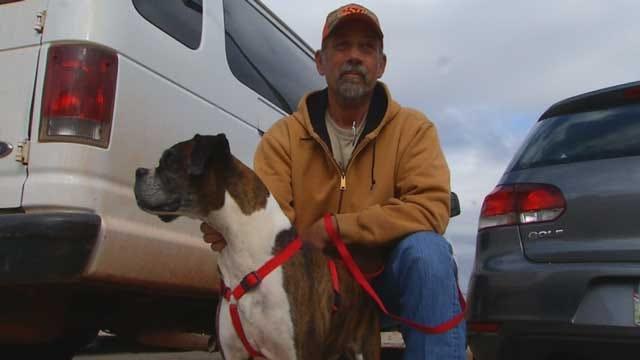 Lost North Dakota Dog Found In OK On Flight Home