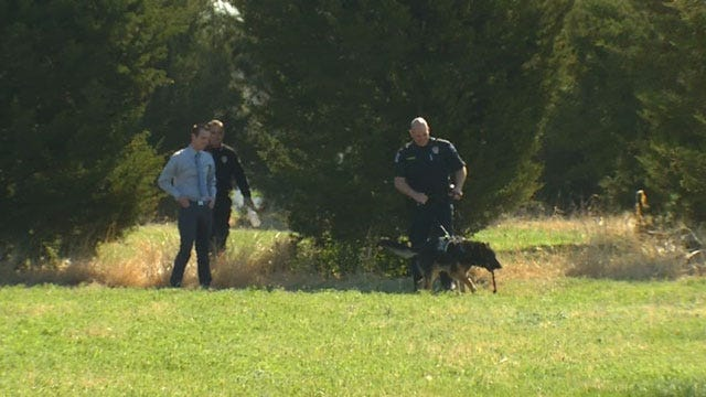 OK County Sheriff's Deputies Welcome New K9s To Force