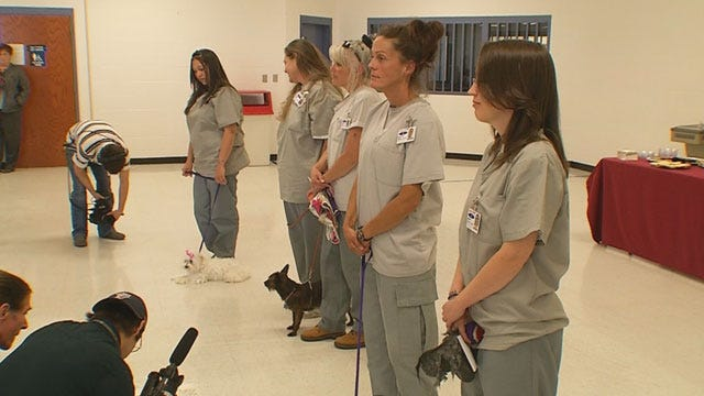 """Dogs Trained By OK Inmates Graduate From """"Guardian Angels"""""""