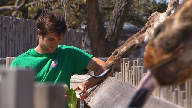OKC Zoo Patrons, Staff Mourn Loss Of Baby Giraffe