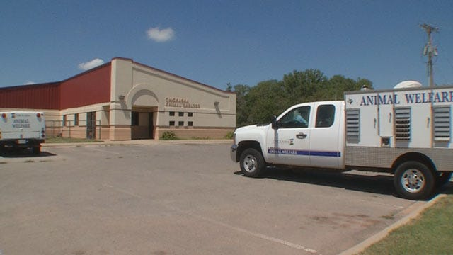 Chickasha City Council Discussing Nuisance Wildlife Options