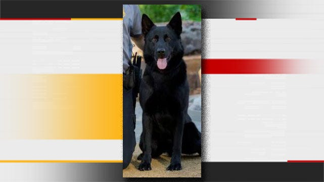 OCPD, Community Members Honor Fallen K-9 Officer