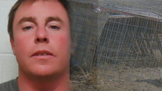 Oklahoma Man Faces Several Felonies Over Feral Hogs