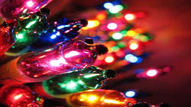 Red Dirt Diaries: Downs Family Christmas Lights