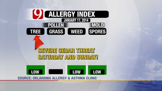 High Amounts Of Cedar Pollen Expected In Oklahoma This Weekend
