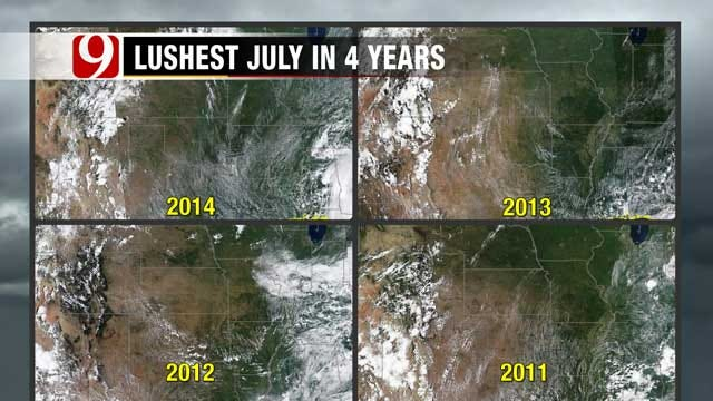 Vegetation Comparison: Lushest July In 4 Years