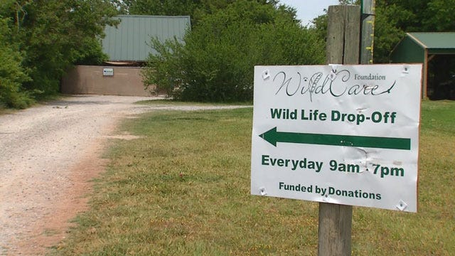 Concerns For Wildlife During Memorial Day Weekend