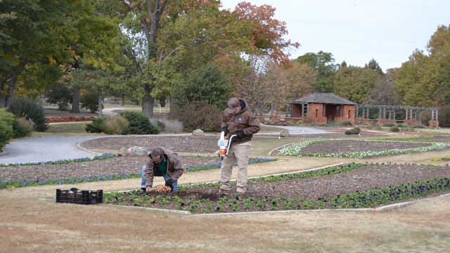 OKC Park Gets Taste Of Spring During Arctic Freeze