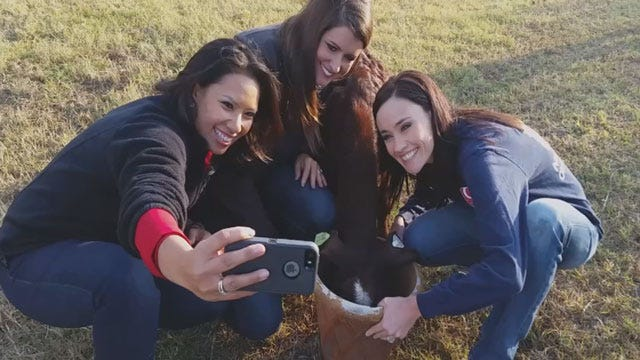 Take This Job And Love It: Bobbie, Lacey And Rachel Herd Goats