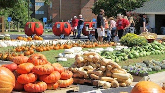 Pumpkin Patch In Edmond Benefits Special Needs Community