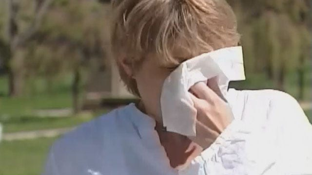Allergy Alert Issued In Oklahoma On Friday Due To Ragweed Pollen
