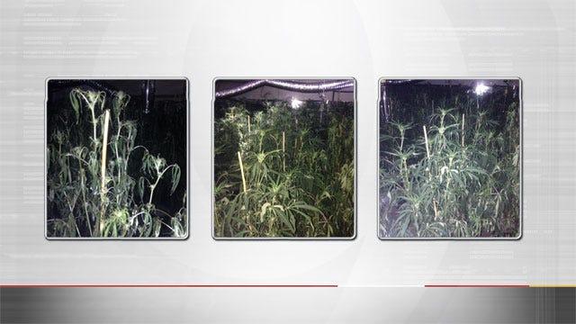 Edmond Police Investigate Sophisticated Marijuana Growing Scheme