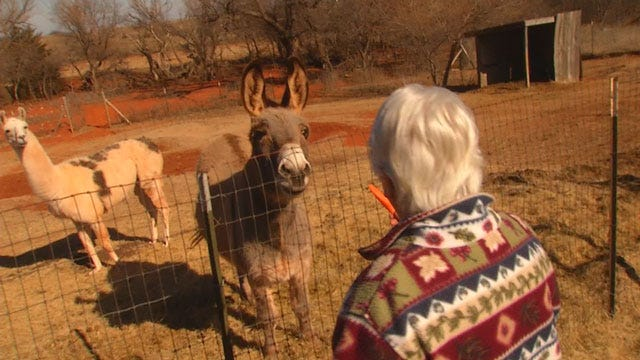 Logan County Woman Adopts Special Needs Pets