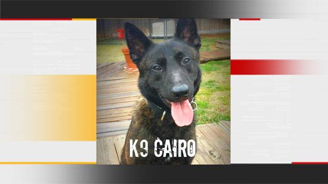 Authorities: K9 Cairo Helps Deputies Catch Suspects After OKC Foot Chase
