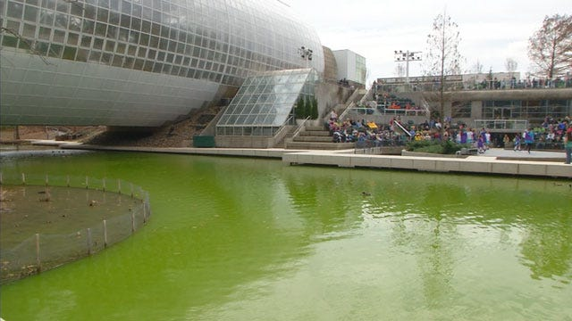 Vandals Dye Water Green At Myriad Gardens For Second Year In A Row