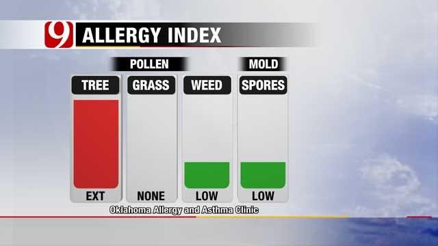 Spring Kicks Off Friday, Beware Of Allergy Season