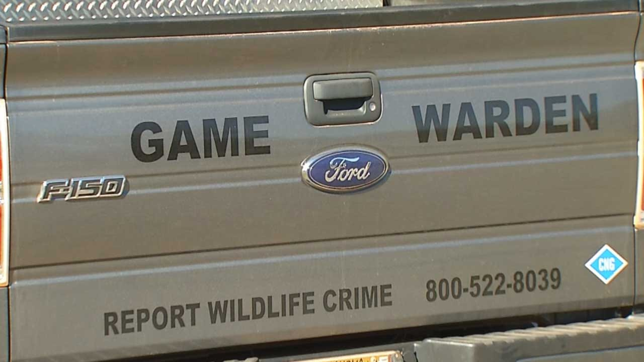 Oklahoma Game Wardens Swamped With Poaching Cases