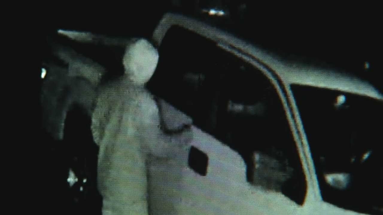 Home Surveillance Cameras Capture Vehicle Burglary