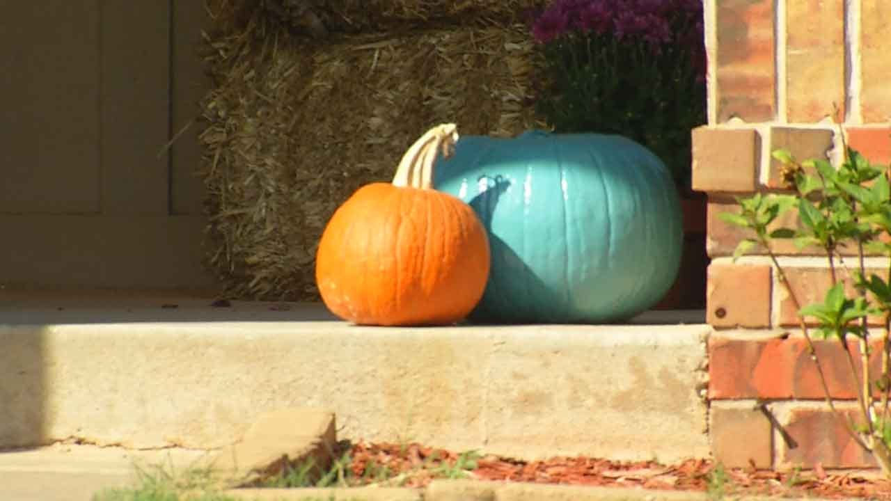 Teal Pumpkin Project Offers Halloween Alternatives For Kids With Allergies