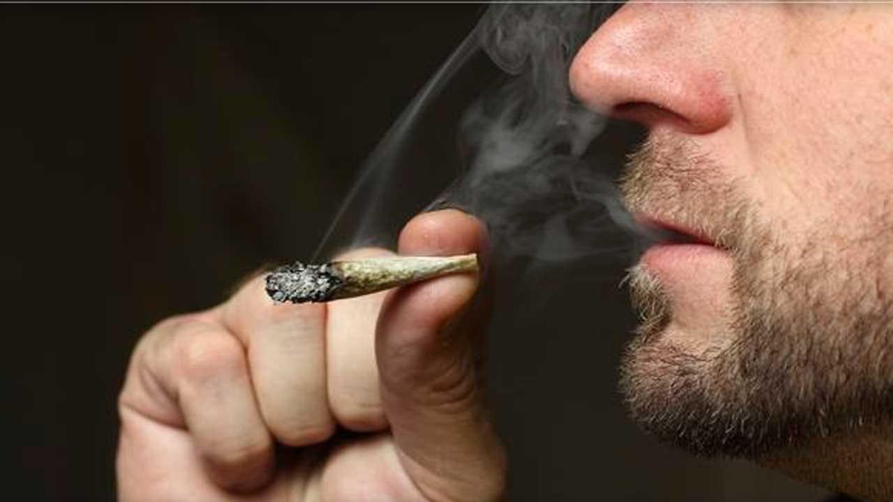Marijuana Use Doubles Among U.S. Adults