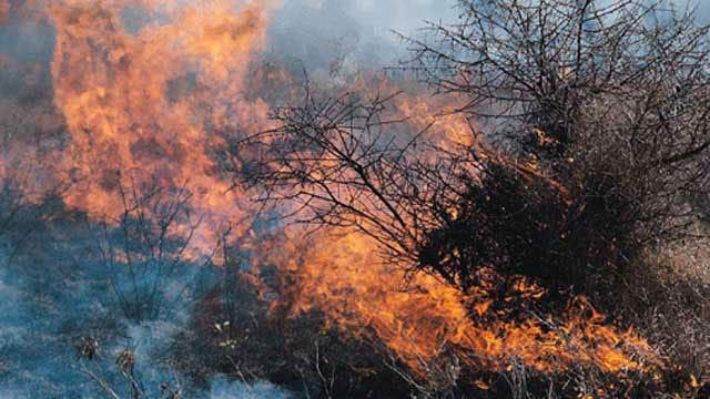 Firefighters Battle Grass Fire Near Homes In NW OKC