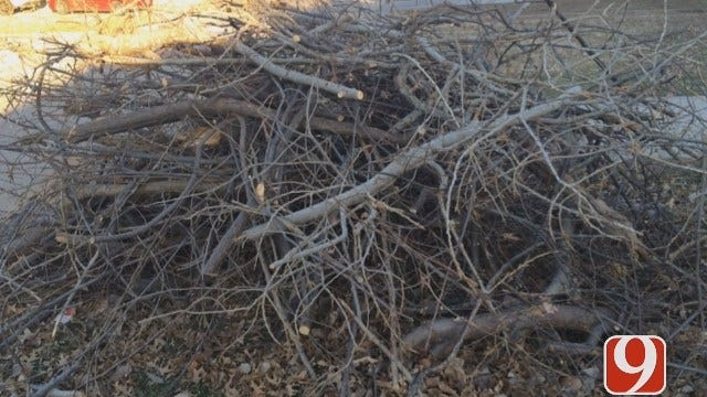 Second Round Of Ice Storm Debris Cleanup Set To Commence