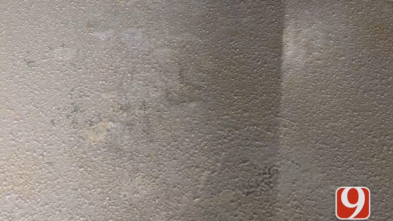 Resident Fed Up With Mold Problem At Yukon Apartment