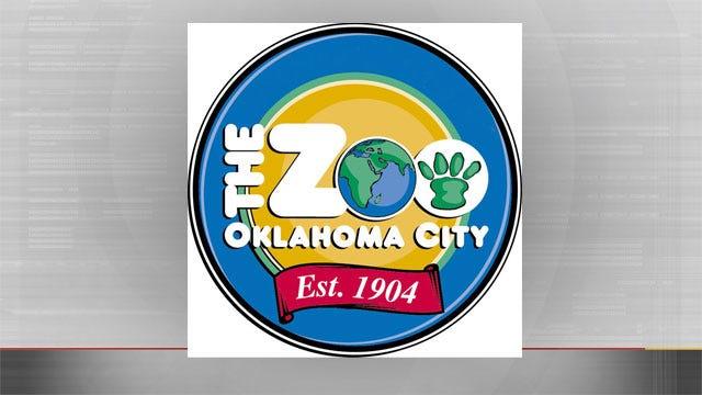OKC Zoo Plans For $15 Million Expansion
