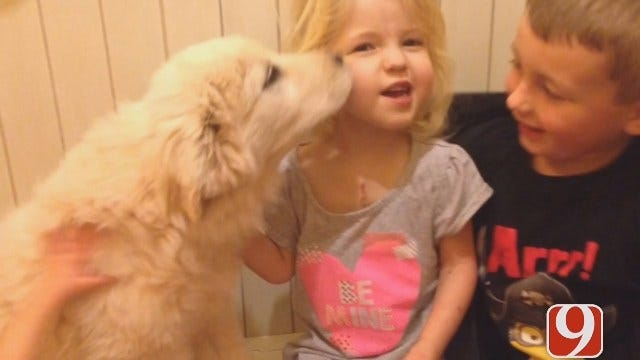 Metro Heart Patient And Her Pup Now Have Matching Scars