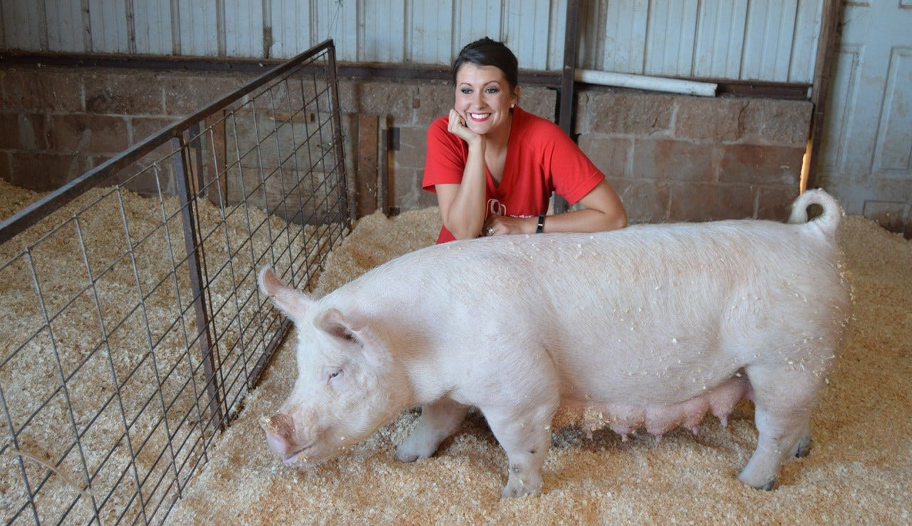 Kiss The Pig Contest Raises Money For Food For Kids