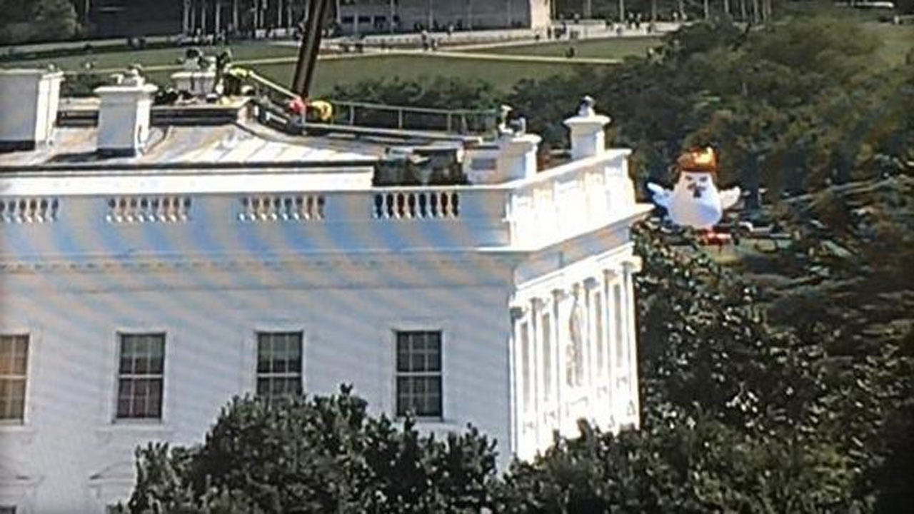 Massive, Inflatable Chicken With Orange Hair Is Staring Down The White House
