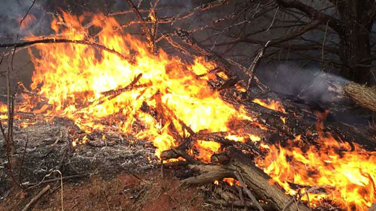 Several Wildfires Break Out Saturday In Central OK