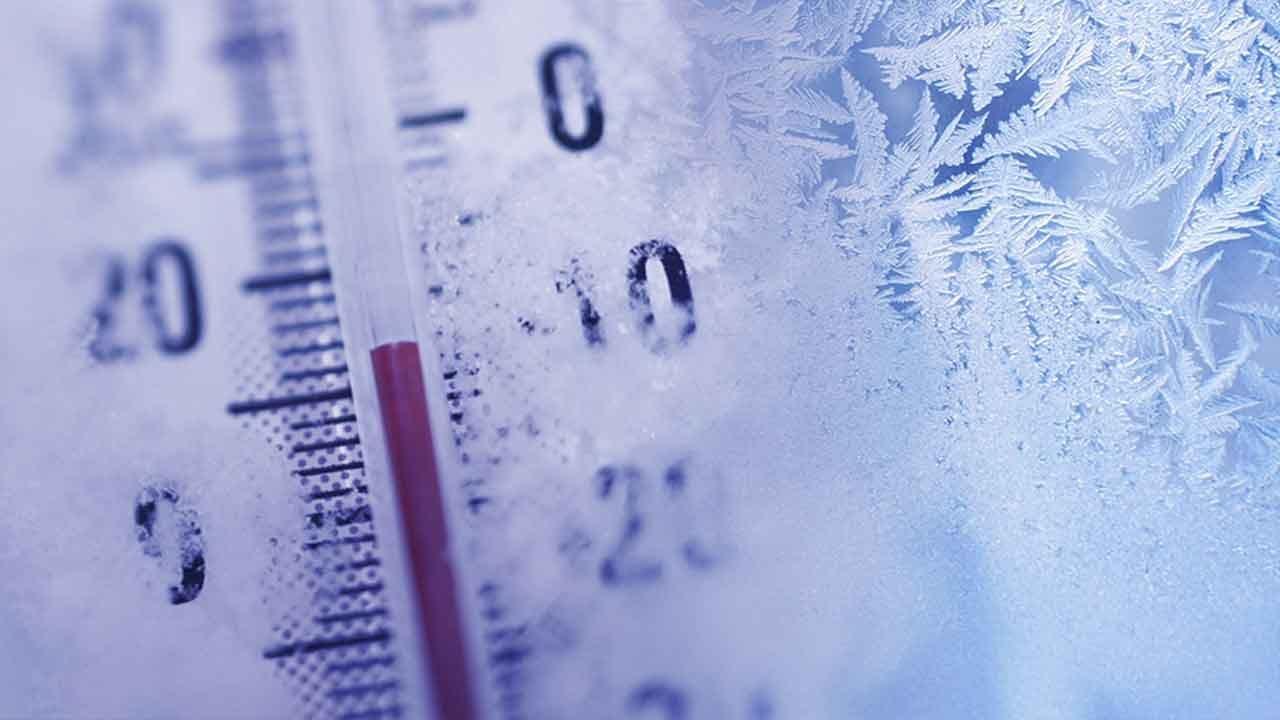 """Dog Found """"Frozen Solid"""" On Ohio Porch"""