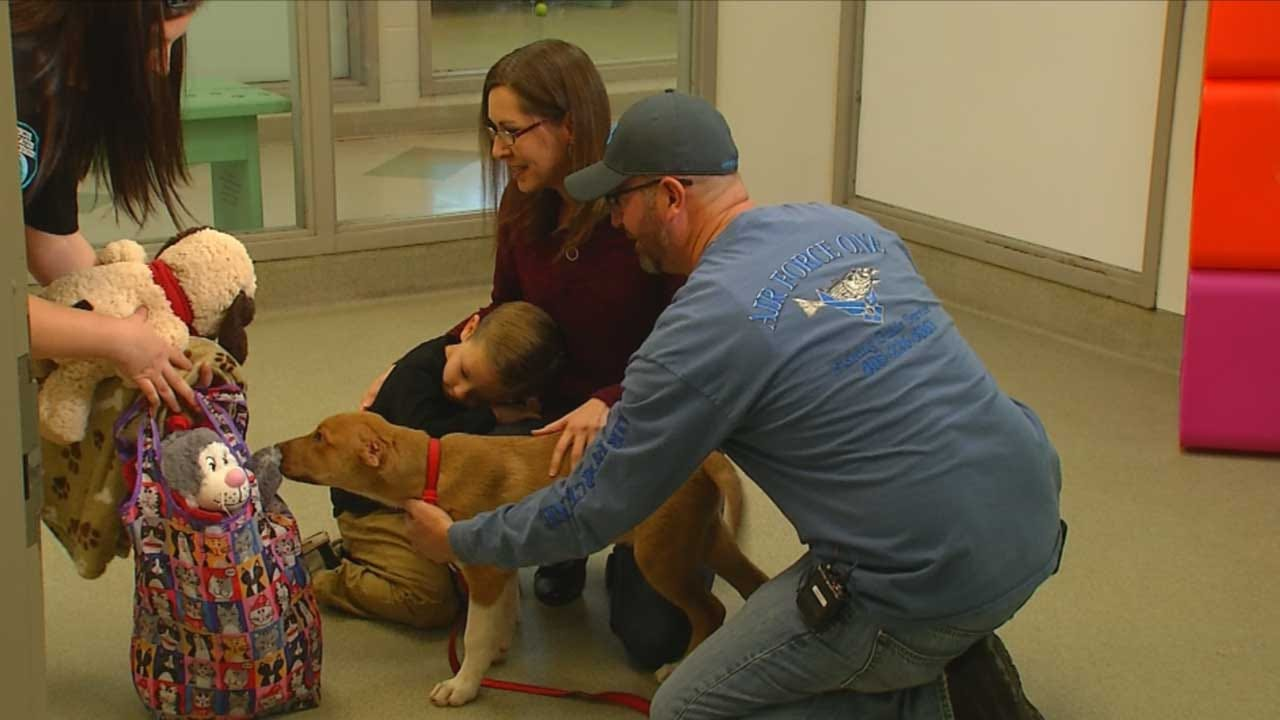 Family Adopts Puppy Found In SW OKC With Ears Cut Off