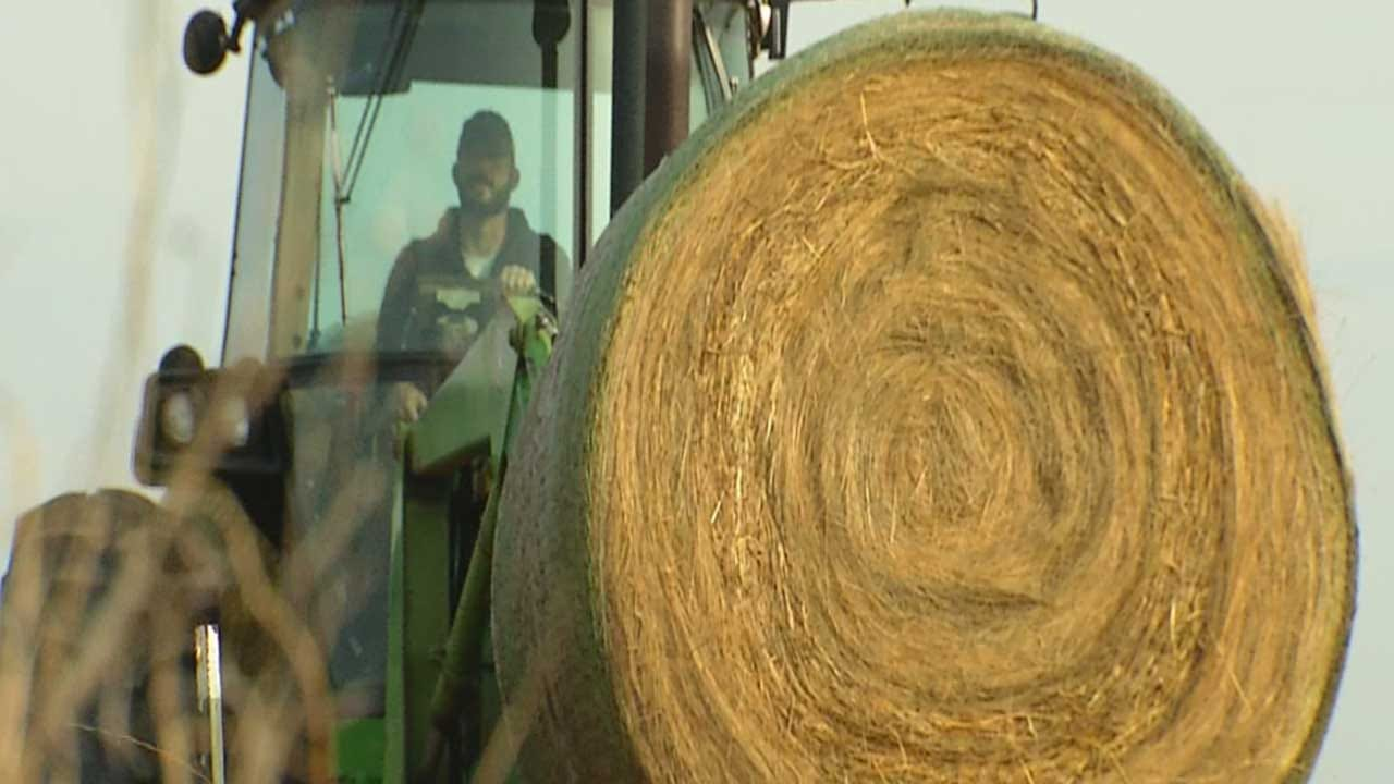 Young Farmers Donate To NW Oklahoma Fire Victims