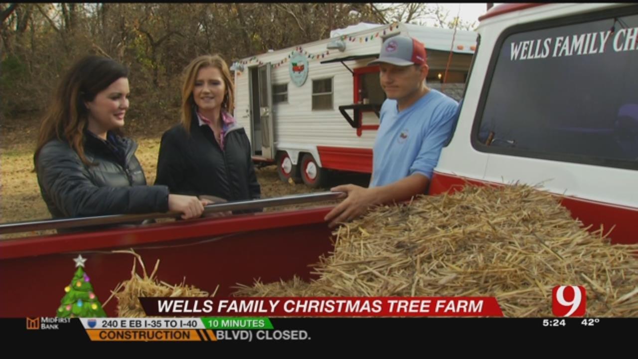 News 9's Lacie Lowry, Robyn King Visit Christmas Tree Farm